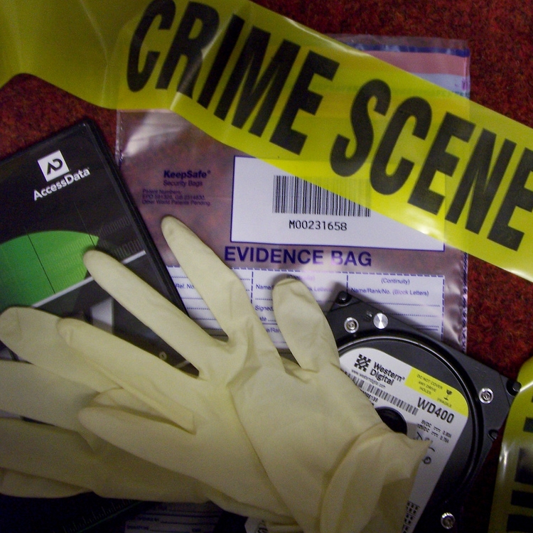 CSI – Texas: The Science of Sleuthing