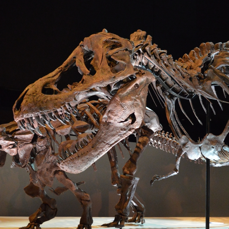 Dinosaurs in the Digital Age: Facts, Fictions, and Forgeries