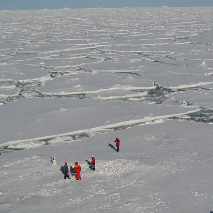 Come Ice or High Water: How Will Global Warming Affect Antarctic Ice Sheets and Sea Levels?