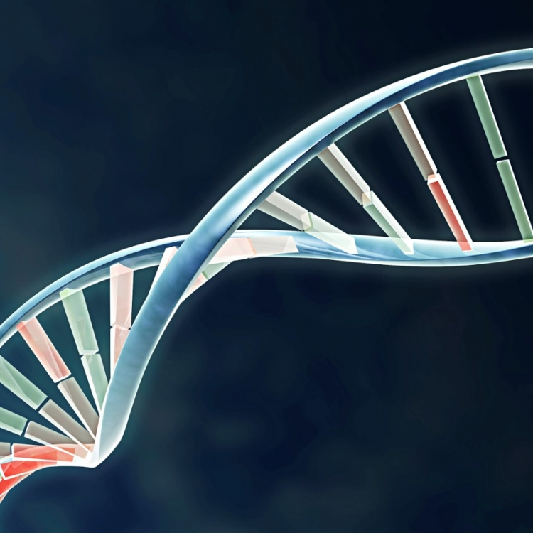 DNA in Hollywood: Fact, Fiction, and Future