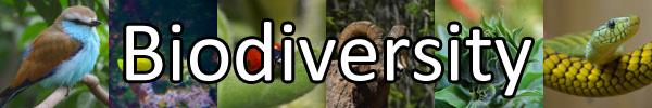 Biodiversity-Banner