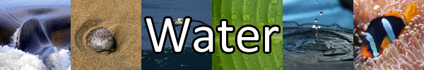 Water-Banner
