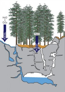 Fig. 1: Rainwater mixes with carbon dioxide in the atmosphere and soils to form carbonic acid (H2CO3), which acts to dissolve away limestone.