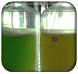 green_fertilizer